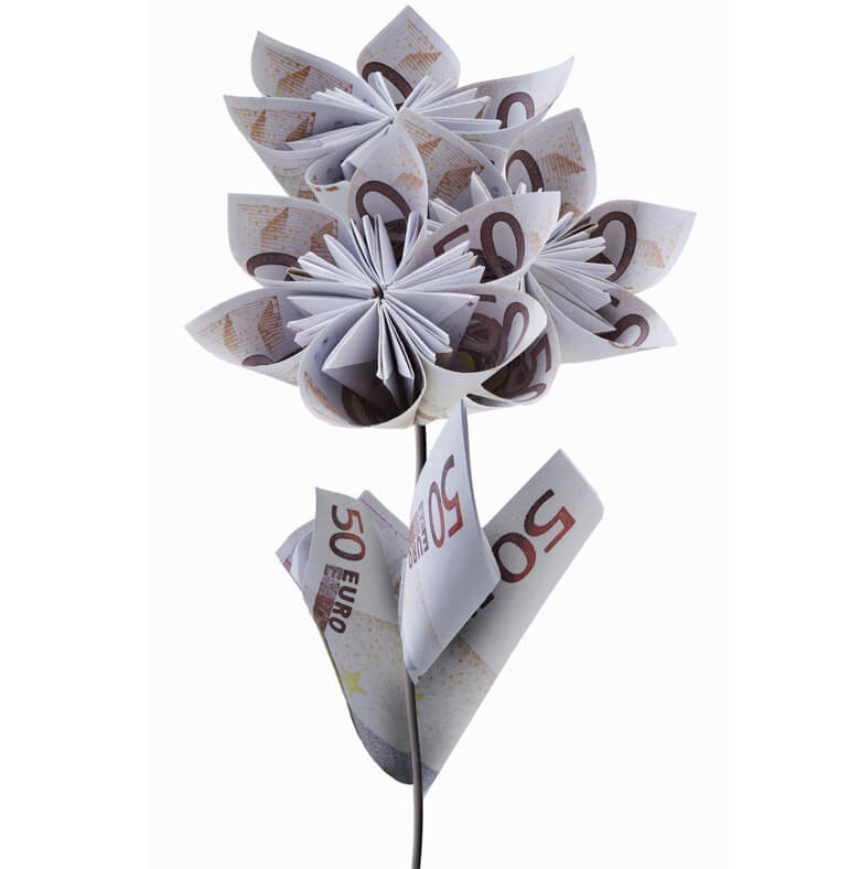 Visuel d'un bouquet de billets